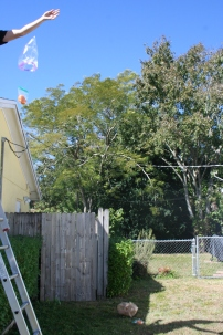 Pumpkin Parachutes (20)