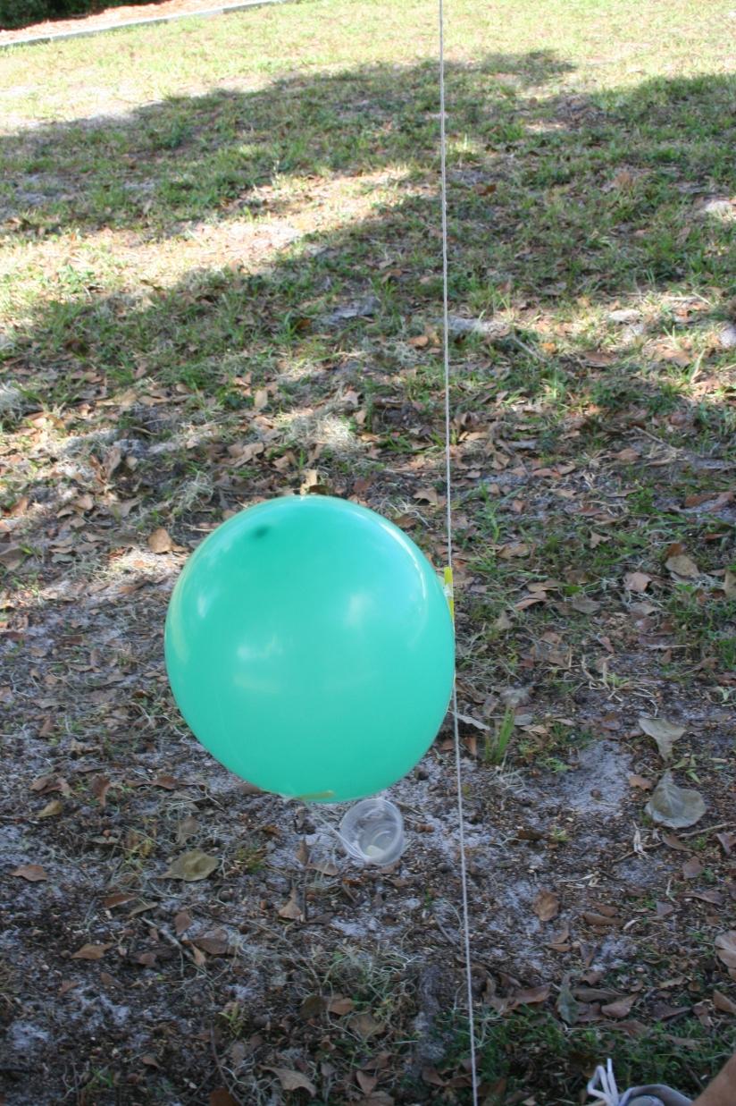 Balloon Blast (51)
