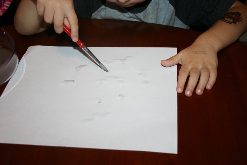Super Secret Disappearing Ink (12)