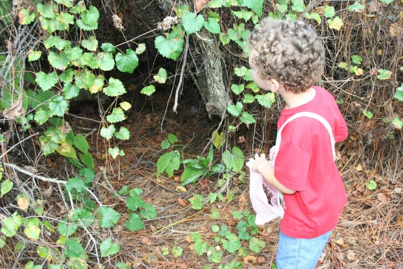 Nature Bag andWalk