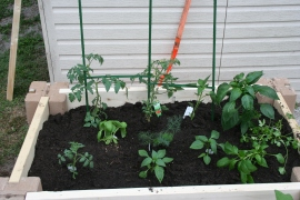 DIY Two Tiered Raised Garden Bed (63)