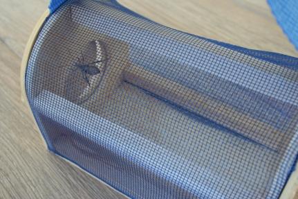 Bug Collector (7)