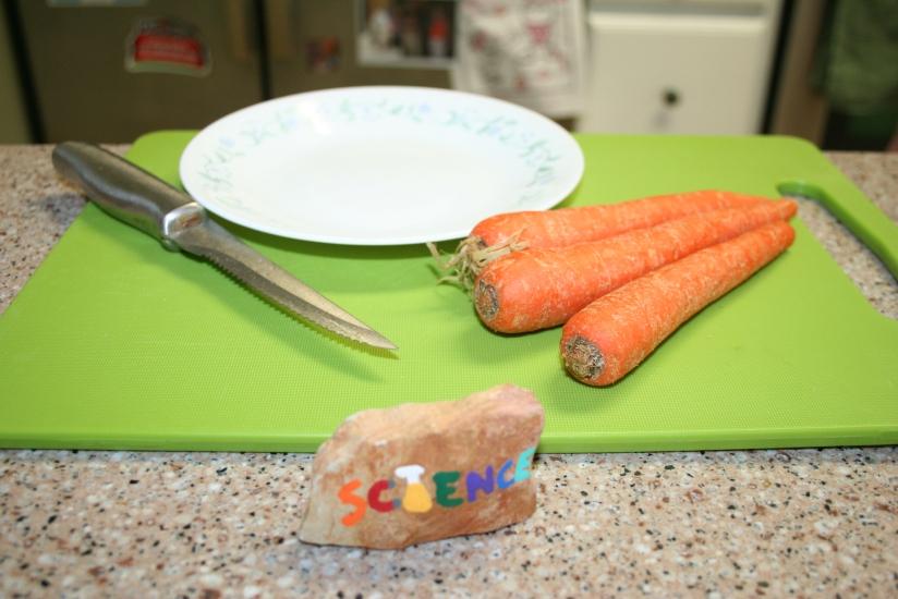 Growing Carrot Greens (1)