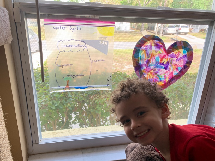 Water Cycle in a Bag and Sun Catcher