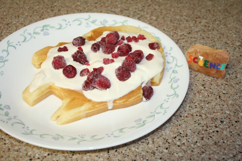 Kitchen Science: Homemade Whipped Cream