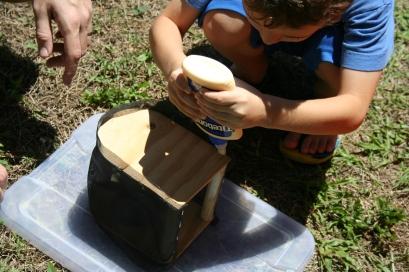 DIY Build Your Own Bug House (169)