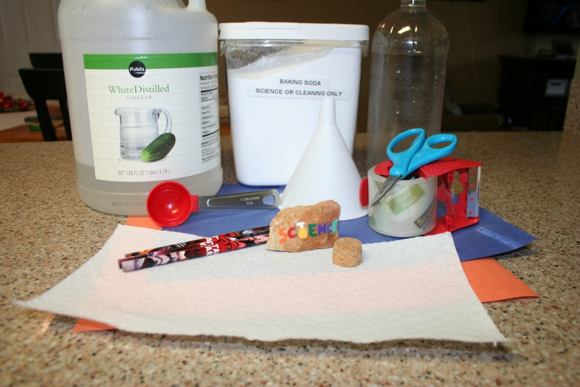 DIY Soda Bottle Rocket (3)