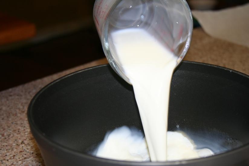 Making Plastic from Milk and Vinegar (11)